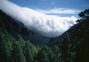 Park Narodowy Caldera de Taburiente